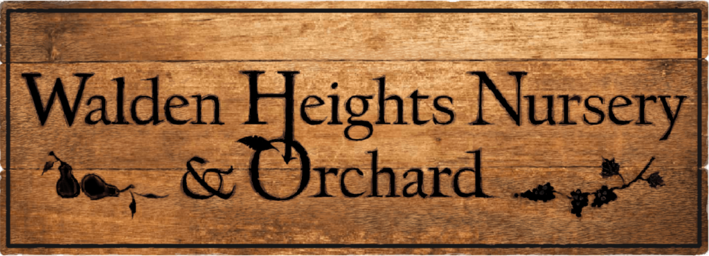 Walden Heights Nursery & Orchard